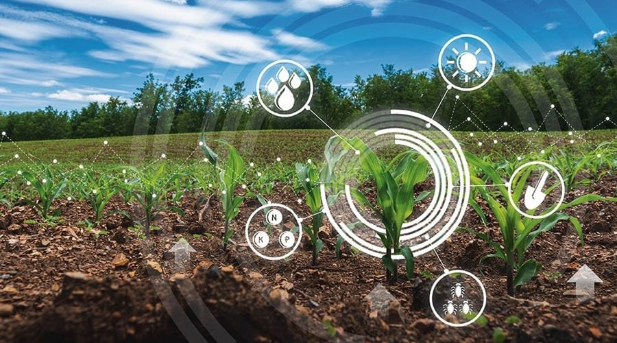 Transforming the Agriculture of Tomorrow with Genomics